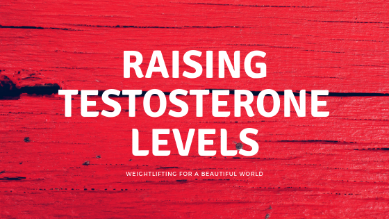 RAISING TESTOSTERONE LEVELS
